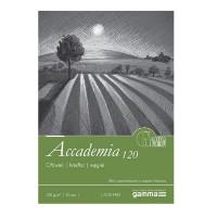 Склейка для рисунку, А3, 50 л., 120 г/м2, GAMMA Accademia